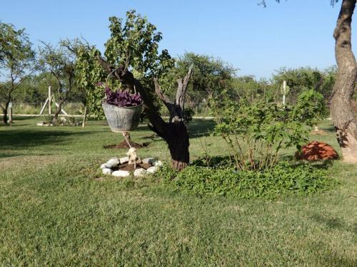 Parque de Las Albahacas cabañas apart - Merlo, San Luis